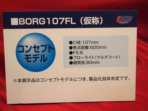Cp2015_borg03_2